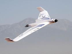 E-flite Opterra 2m Delta Wing Image